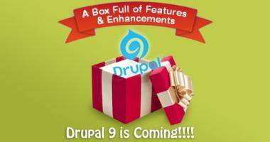Website Development in Drupal 9